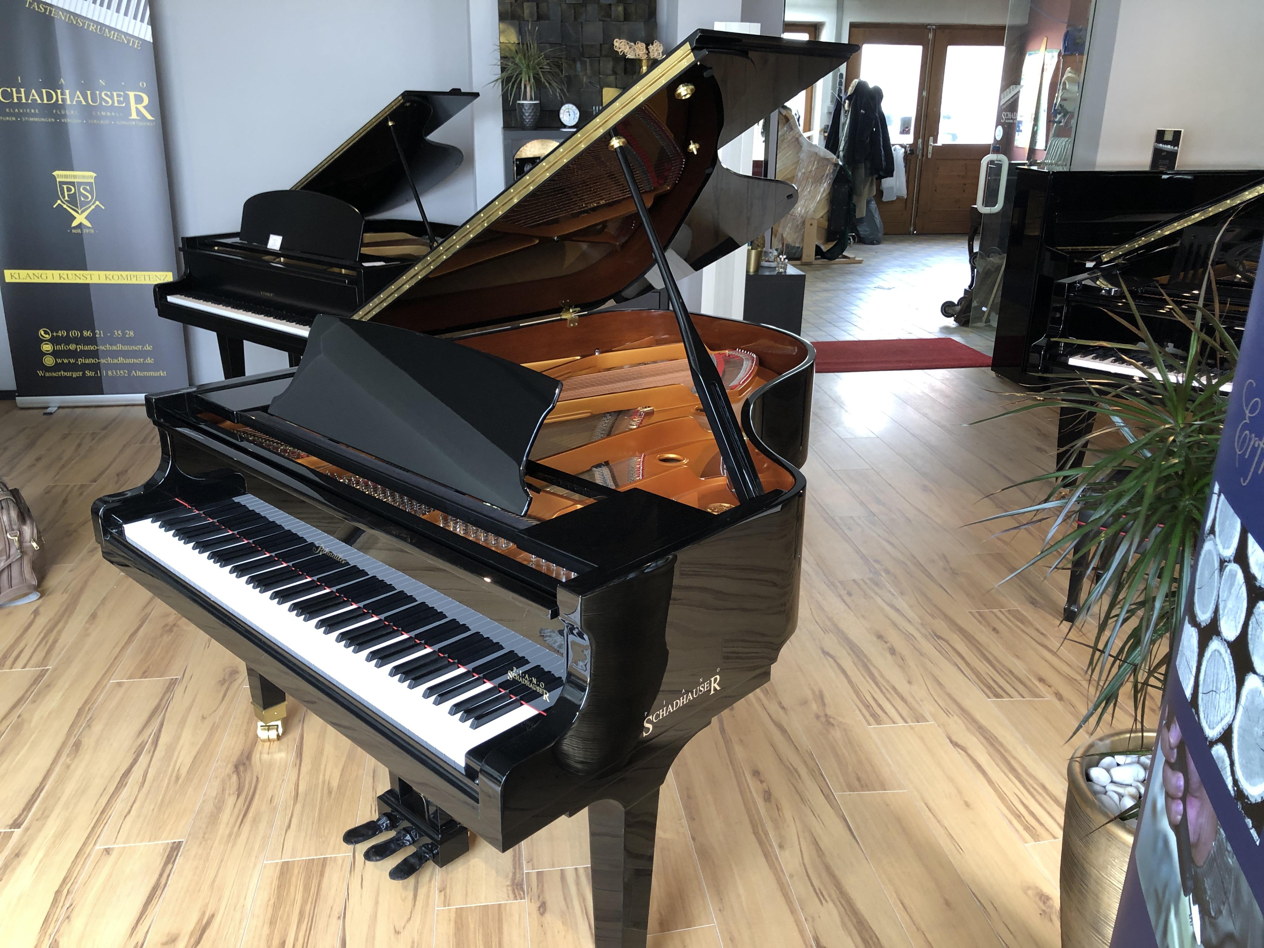 Ritmueller Conservatory 188