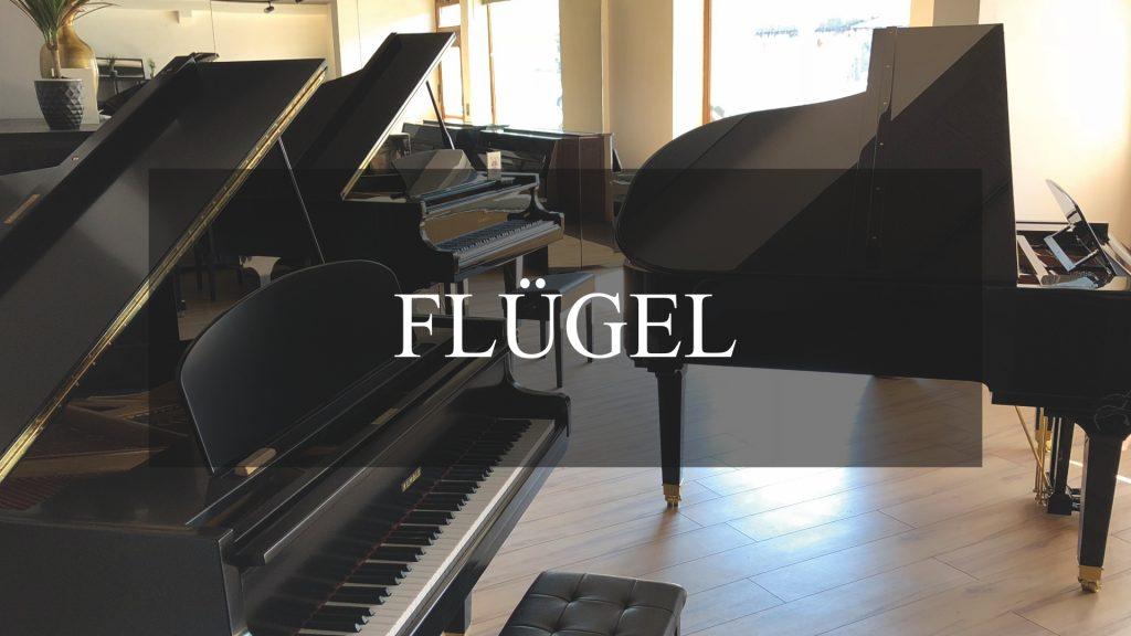 flügel-BUTTON_1